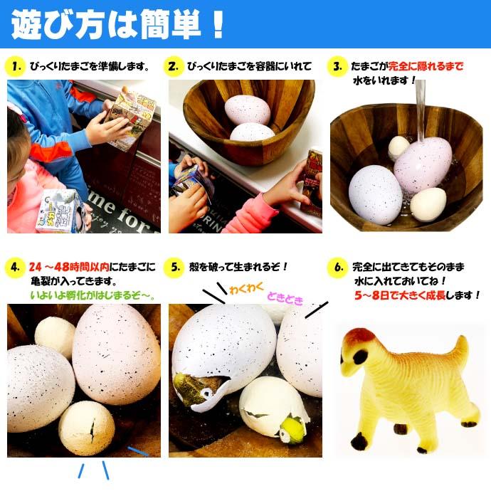 びっくりたまご 卵から生まれて大きくなる人形