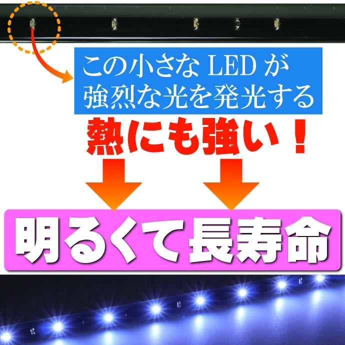 LEDテープ15連★30cmホワイト/ブルー/アンバー/レッド/グリーン  正面発光 防水 切断可能 as77