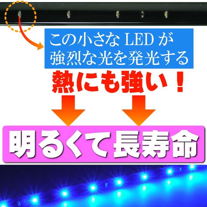 LEDテープ 正面発光